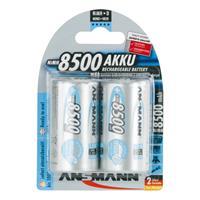 2er Pack Akku, MAX E, NiMh, 1,2V/8500 mAh, Mono (99706709)