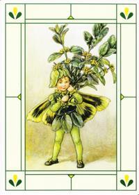 24er Pack Fee Grußkarte Flower-Fairy-Postkarten Buchsbaum bunt Bildkarten (9359217056050)