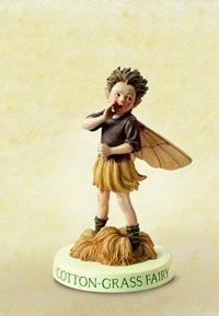 Cotton-Grass Flower Fairy Fee 10cm (9359217257)
