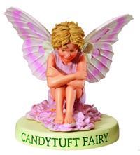 Candytuft Flower Fairy Fee 7cm (9359217303)