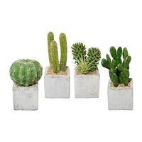 4er Pack Kakteen im Zementtopf 10-13 cm, Kunstpflanzen (994929050224)