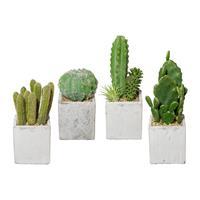 4er Pack Kakteen im Zementtopf 13-22 cm, Kunstpflanzen (994929050262)