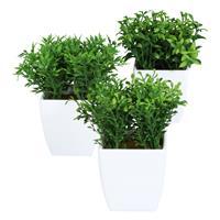 3er Pack Mini-Box, Gras ca. 13 cm im Kunststofftopf 6,5x7cm weiß, Kunstpflanzen (994929701645)