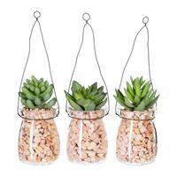 3er Pack Sukkulenten ca 11cm in Glashängevase 7x5x20cm, m. Kies, Kunstpflanzen (994929258323)