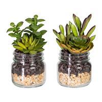 2er Pack Sukkulentenarrangement,15cm grünrot, im Glas 7,5x7cm, mit Kies, Kunstpflanzen (994929257852)